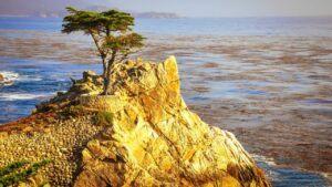 monterey bay california coast
