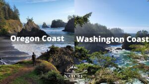 oregon coast vs washington coast 2