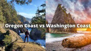 oregon coast vs washington coast