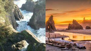 oregon coast vs washington coast comparison
