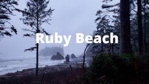 ruby beach washington coast