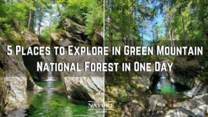 things to do in green mountain national forest vermont
