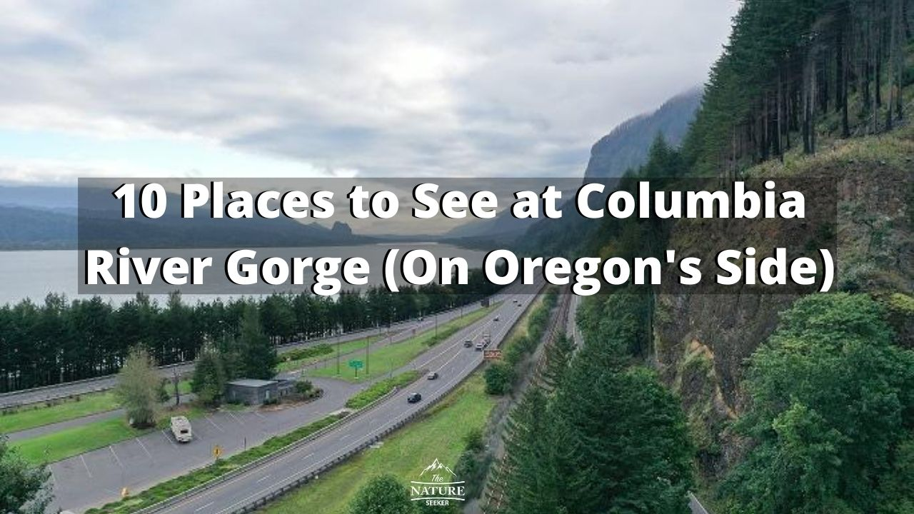 10 Places to See at Columbia River Gorge (On Oregon's Side)