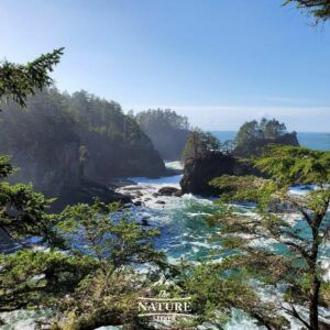 cape flattery washington coast western us road trip