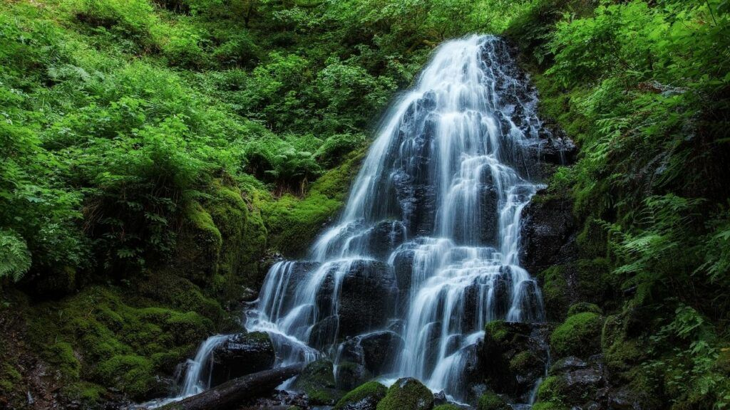fairy falls at columbia river gorge 01