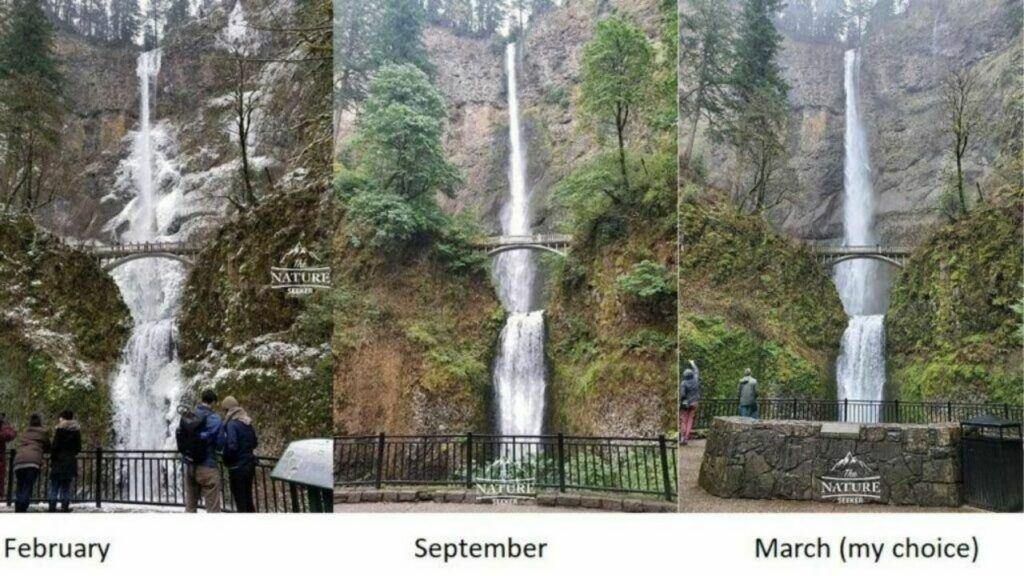 multnomah falls at columbia river gorge photo 01