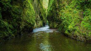 oneonta gorge at columbia river gorge photo 01