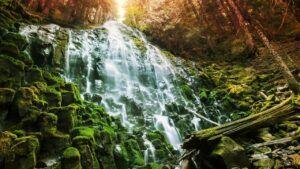 ramona falls at columbia river gorge 01