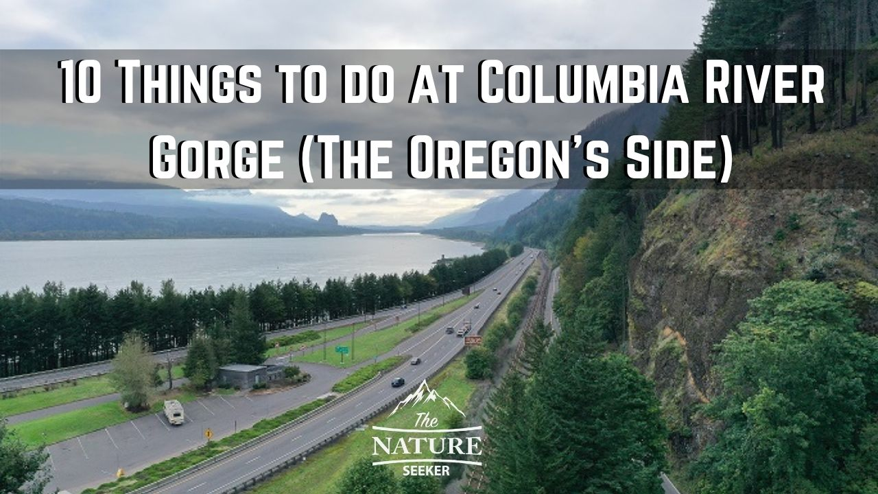 things to do at columbia river gorge