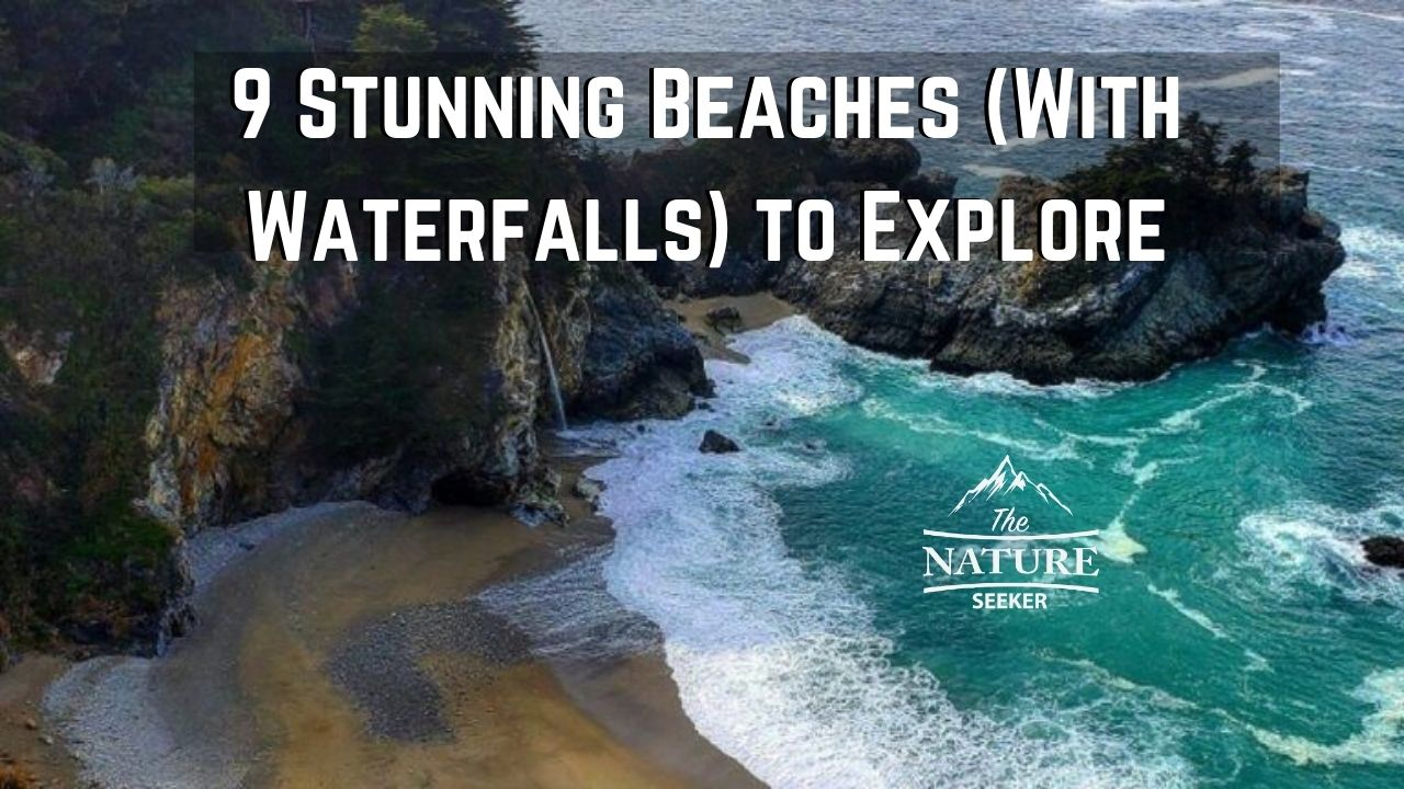 beach with watefall