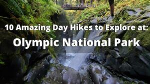 10 Best Day Hikes to Explore at Olympic National Park