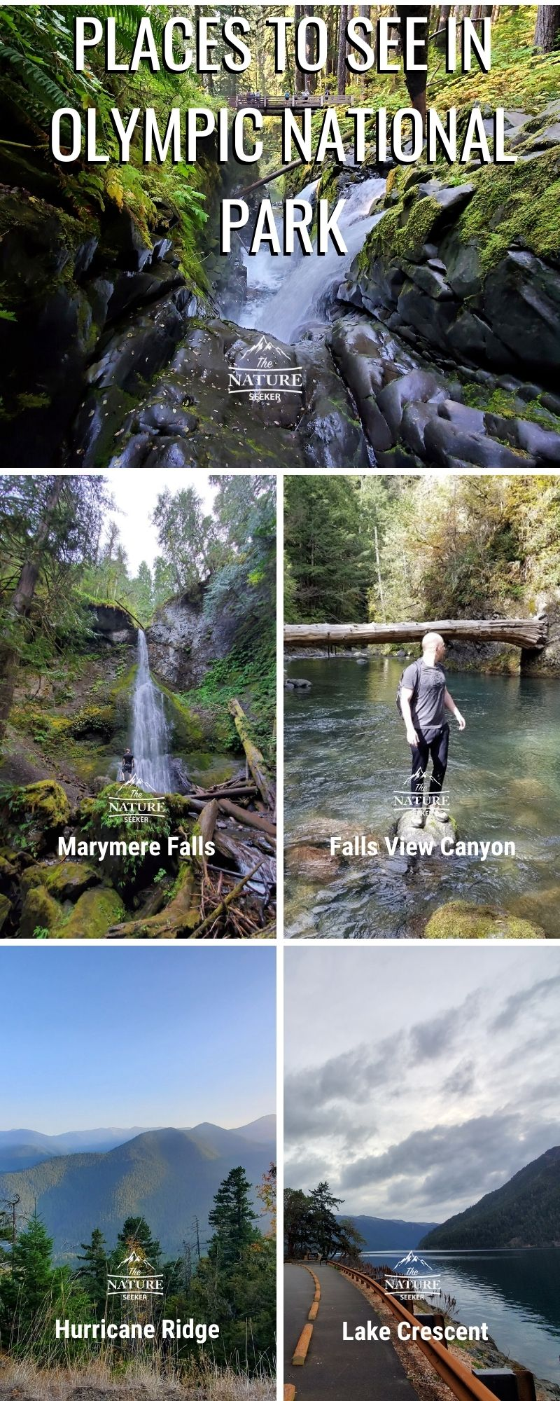 places to see in olympic national park infographic