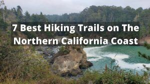 The 7 Best Hiking Trails on The Northern California Coast