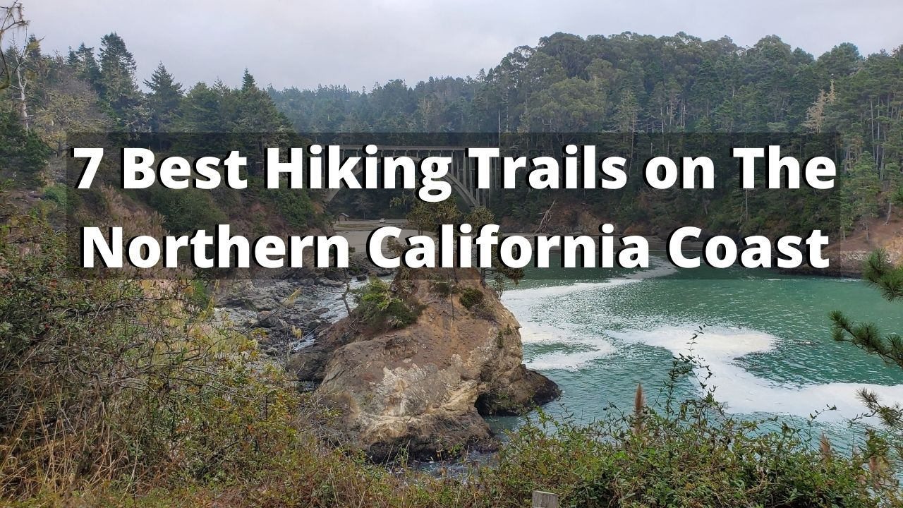 7 Best Hiking Trails on The Northern California Coast