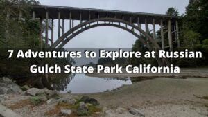 7 Adventures to Try at Russian Gulch State Park California