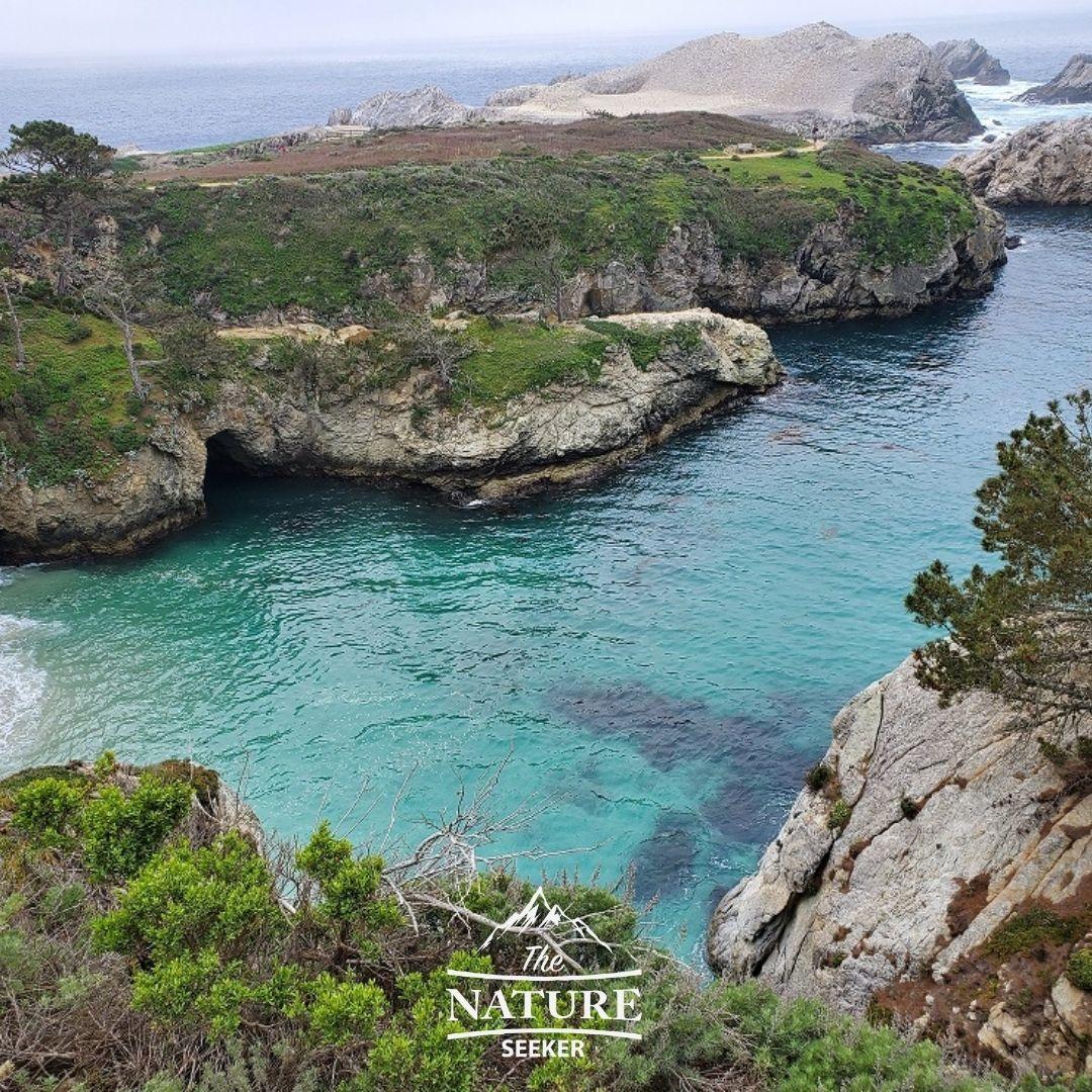 china cove northern california hiking trails