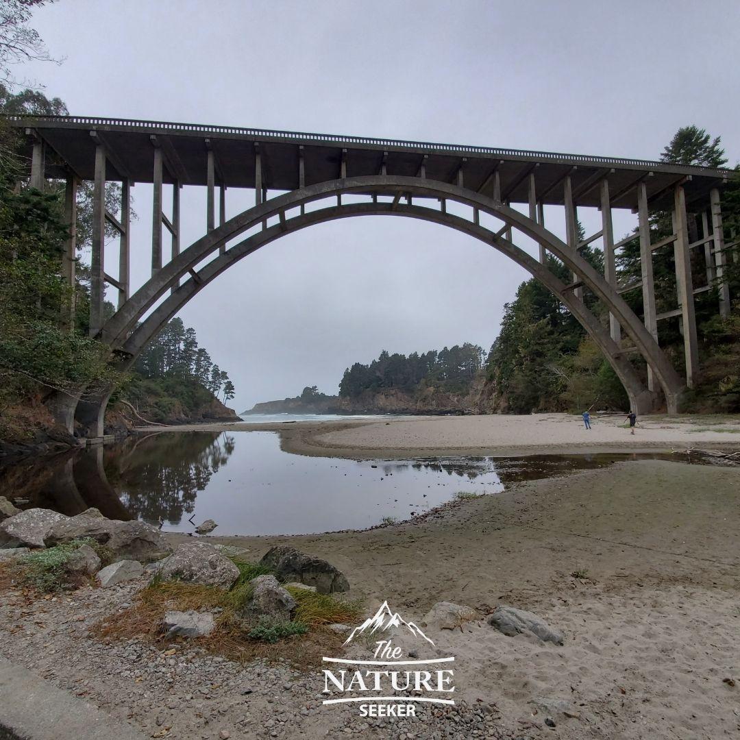 russian gulch state park bridge and trail