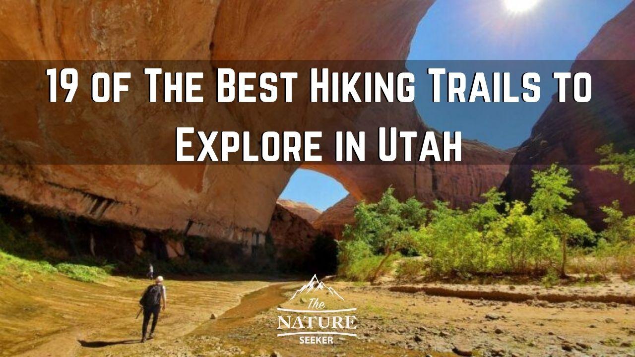 Best Hiking Trails in Utah 01