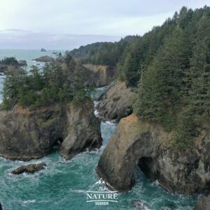 natural bridges sea caves oregon coast