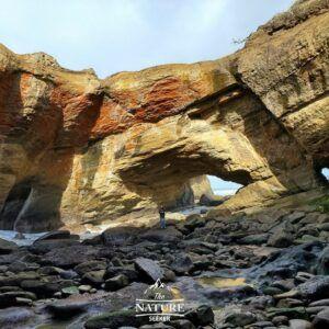 devils punchbowl sea caves oregon coast