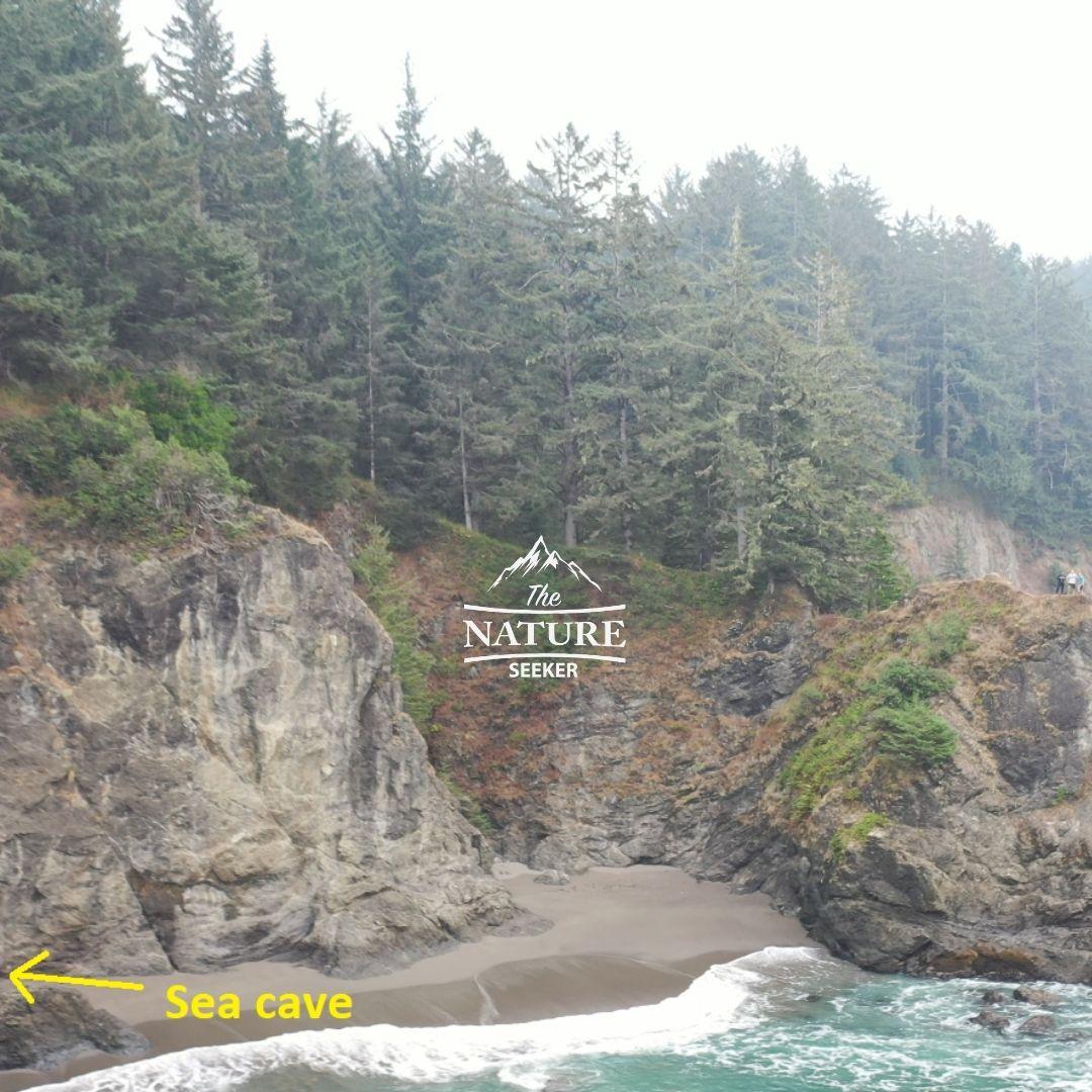 secret beach sea caves oregon coast
