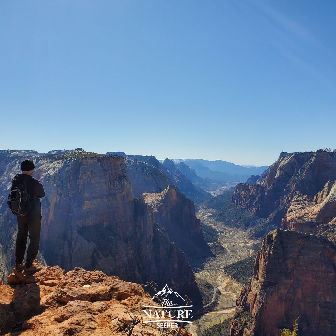 observation point hike utah