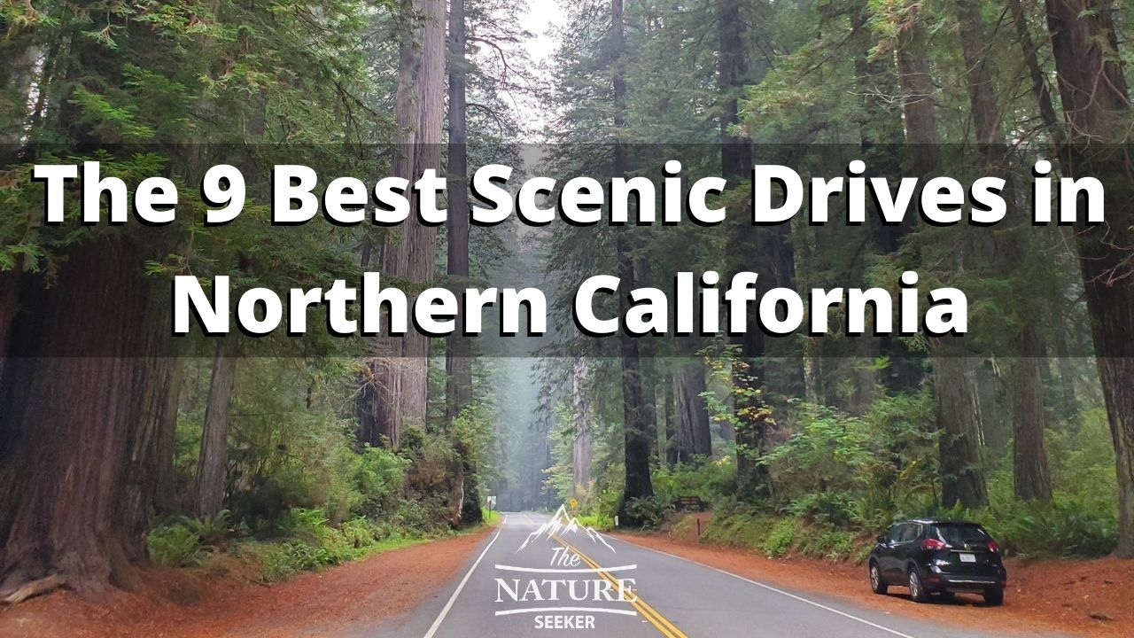 scenic drives in northern california