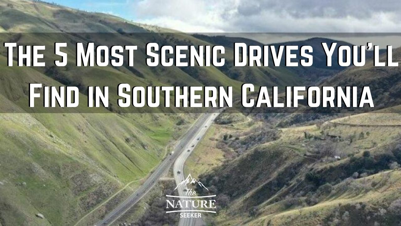 scenic drives in southern california