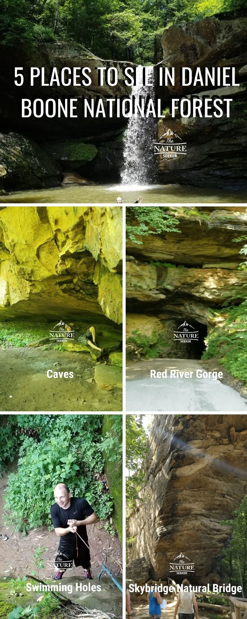 5 things to explore in daniel boone national forest infographic
