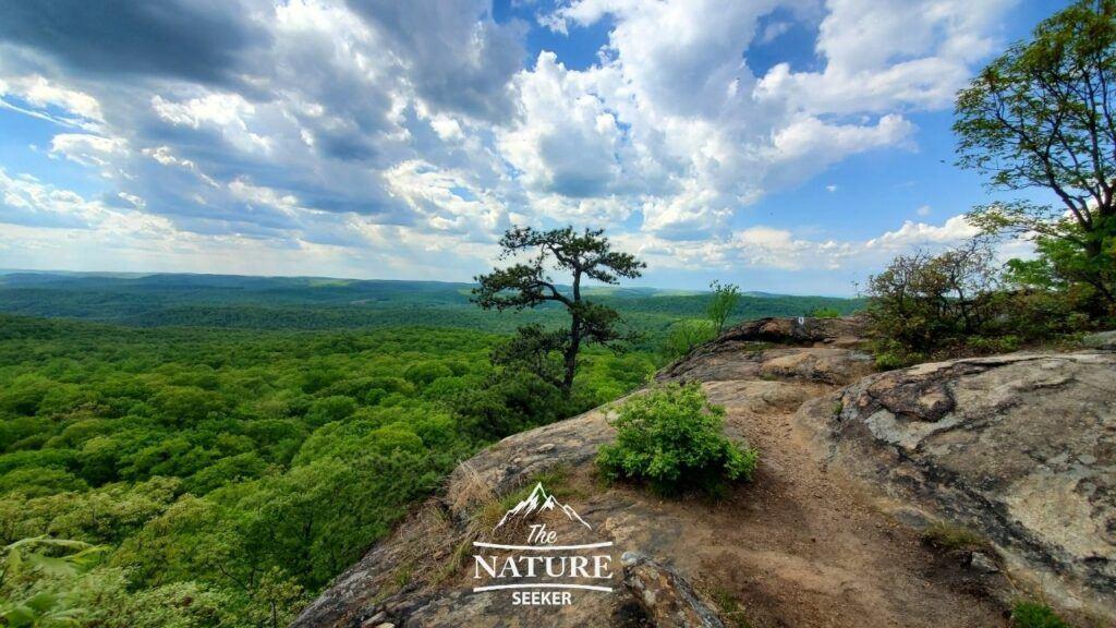 harriman state park kakiat trail image