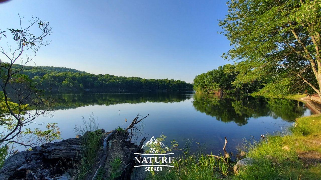 harriman state park pine meadow trail