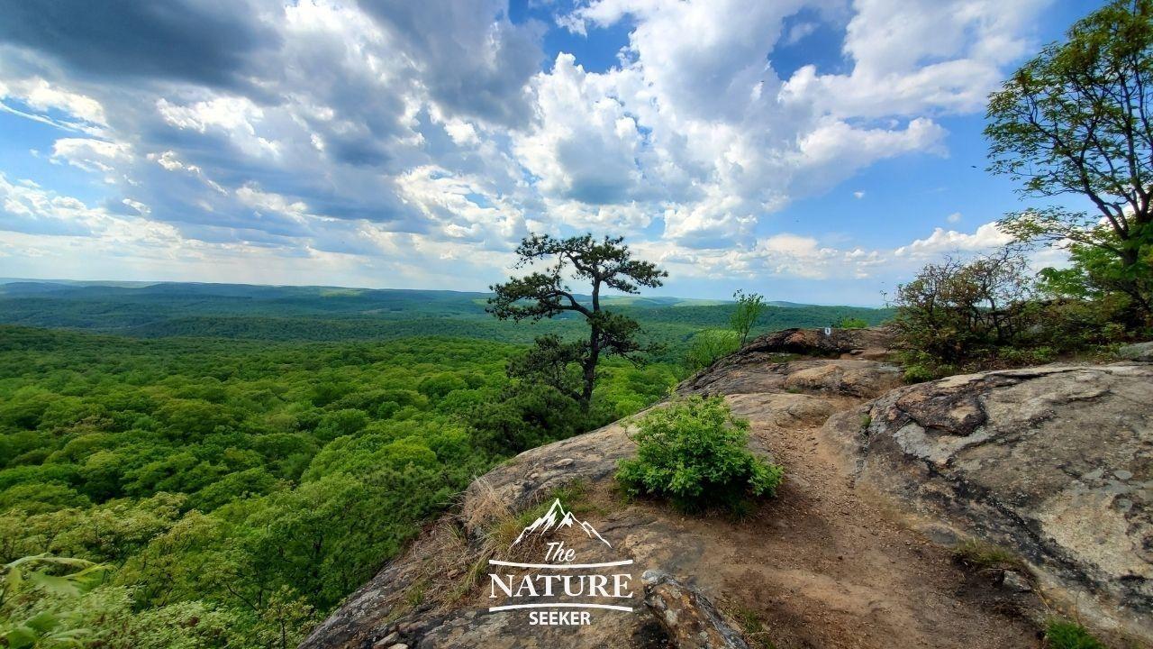 harriman state park reeves brook loop trail hike 01