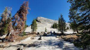 yosemite national park lembert dome