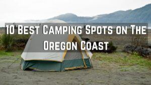 10 Best Camping Spots on The Oregon Coast