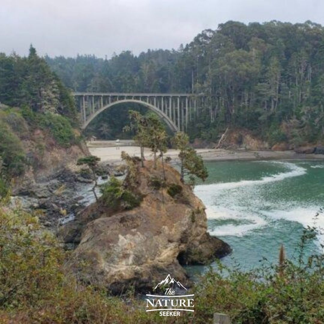 russian gulch state park camping opportunities