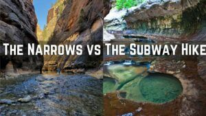 The Narrows vs The Subway. Which Hike is Better For You?