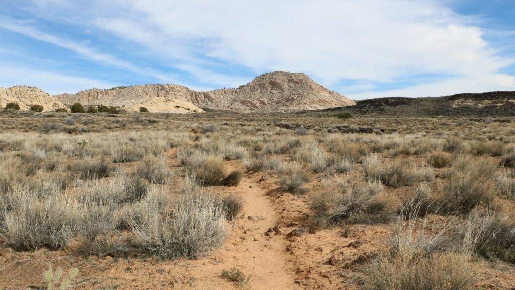 White Rocks amphitheater trail hike near st. george utah
