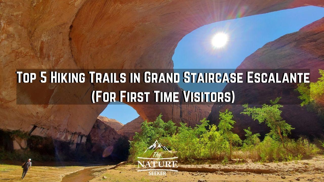 grand staircase escalante hikes
