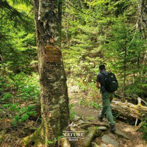 high peak area of devils path hike