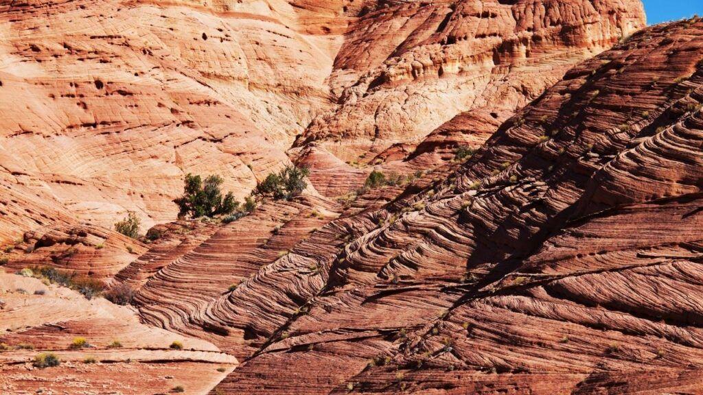 paradise canyon trail hike near st. george utah