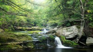 vernooy falls swimming hole in the catskill mountains