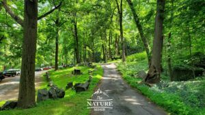 fort lee historic park picnic areas inland