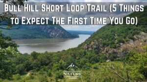 Bull Hill Short Loop. 5 Things to Expect From This Trail