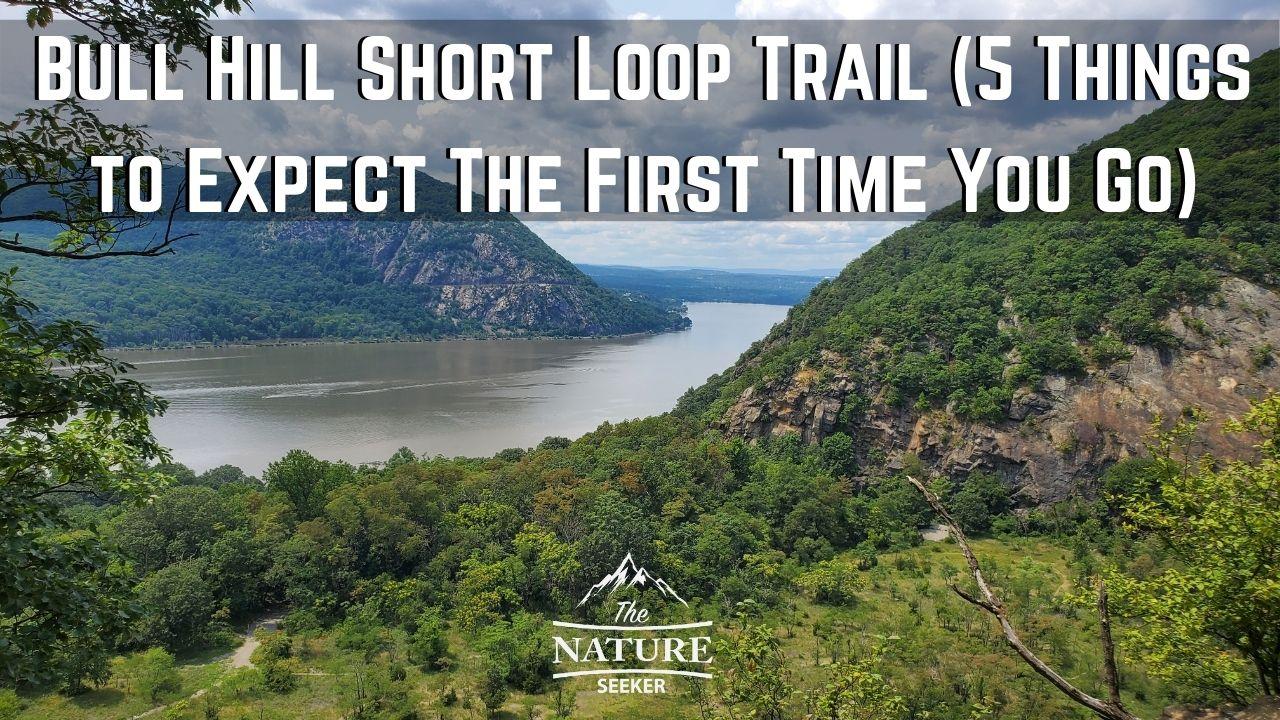 bull hill short loop trail at hudson highlands park review 01