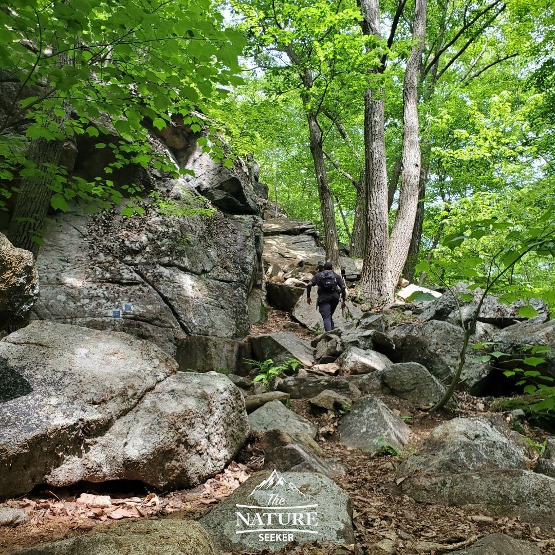 harriman state park reeves brook loop trail scramble area