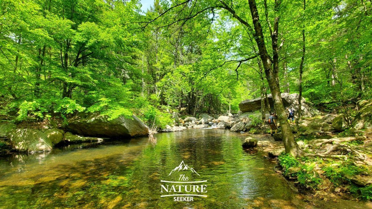 reeves brook loop trail harriman state park swimming hole 01