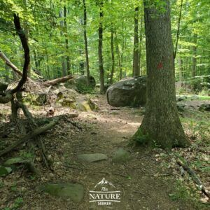 sourland mountain preserve trail markers image and boulders