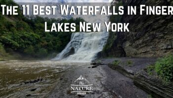 The 11 Best Waterfalls in Finger Lakes