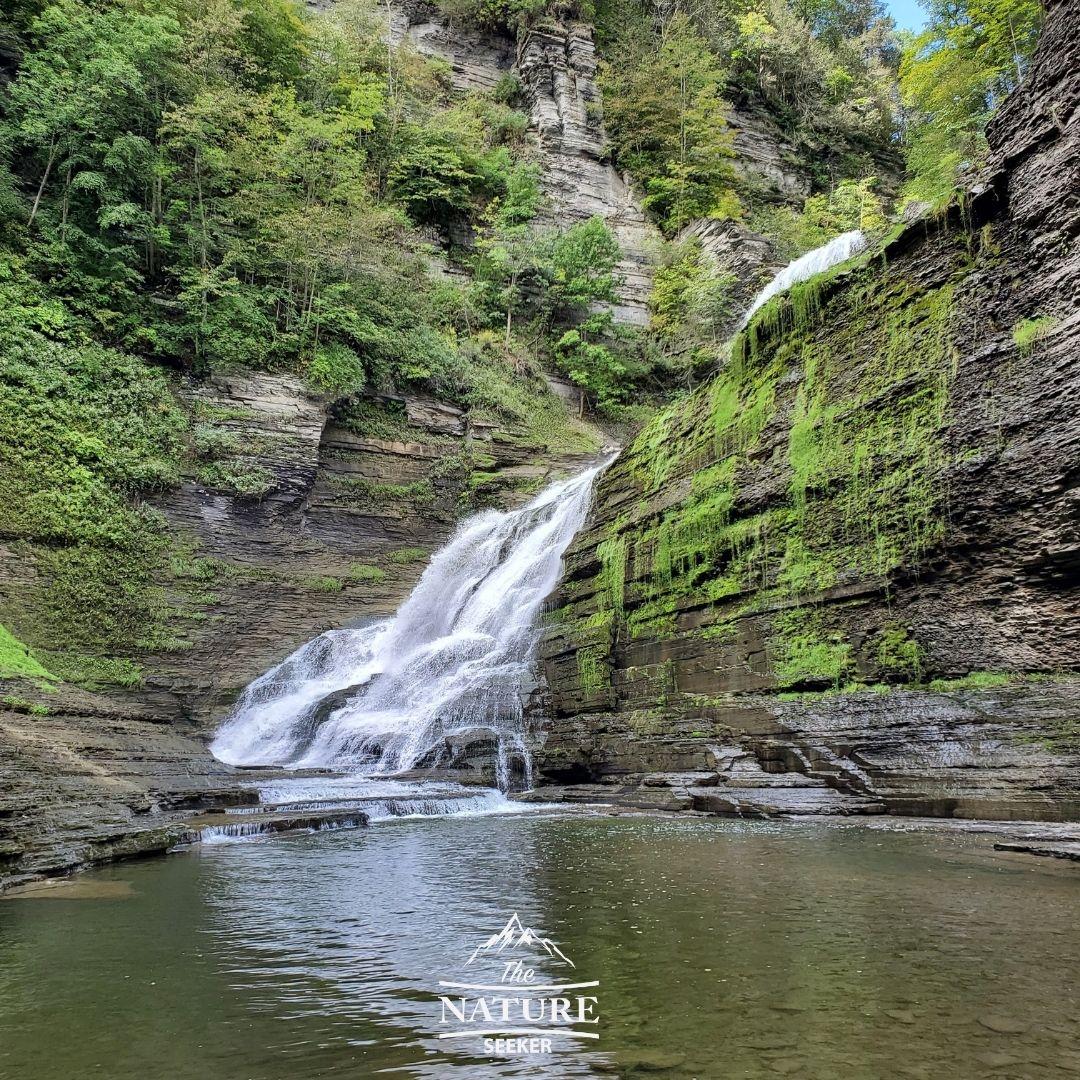 finger lakes waterfalls robert h treman falls