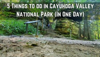 5 Things to do at Cuyahoga Valley National Park (In One Day)